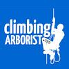 Climbing Arborist
