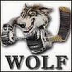 WolfHeavyMetal