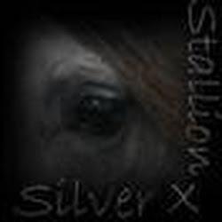 SilverxStallion