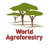 World Agroforestry Centre