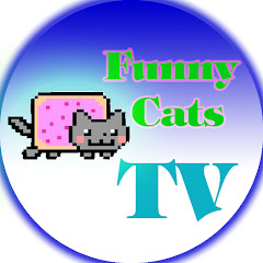 Funny Cats TV