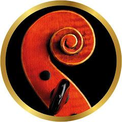 Violino Didático