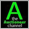 theauctioneerchannel