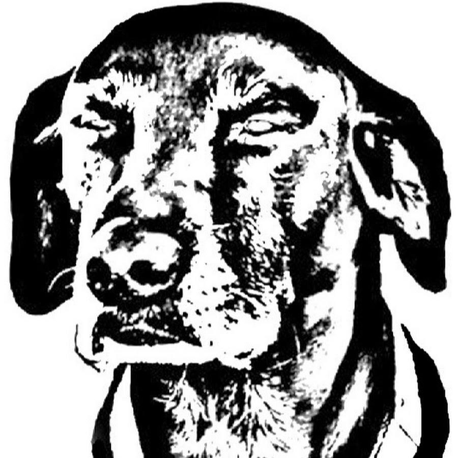 Black Dog Bait Com