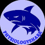Physiology Shark