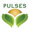 Pulses 2016