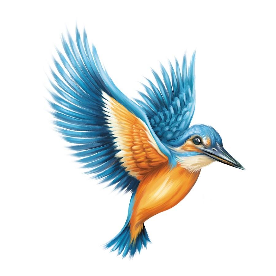 Kingfisher Premium Calendar - YouTube
