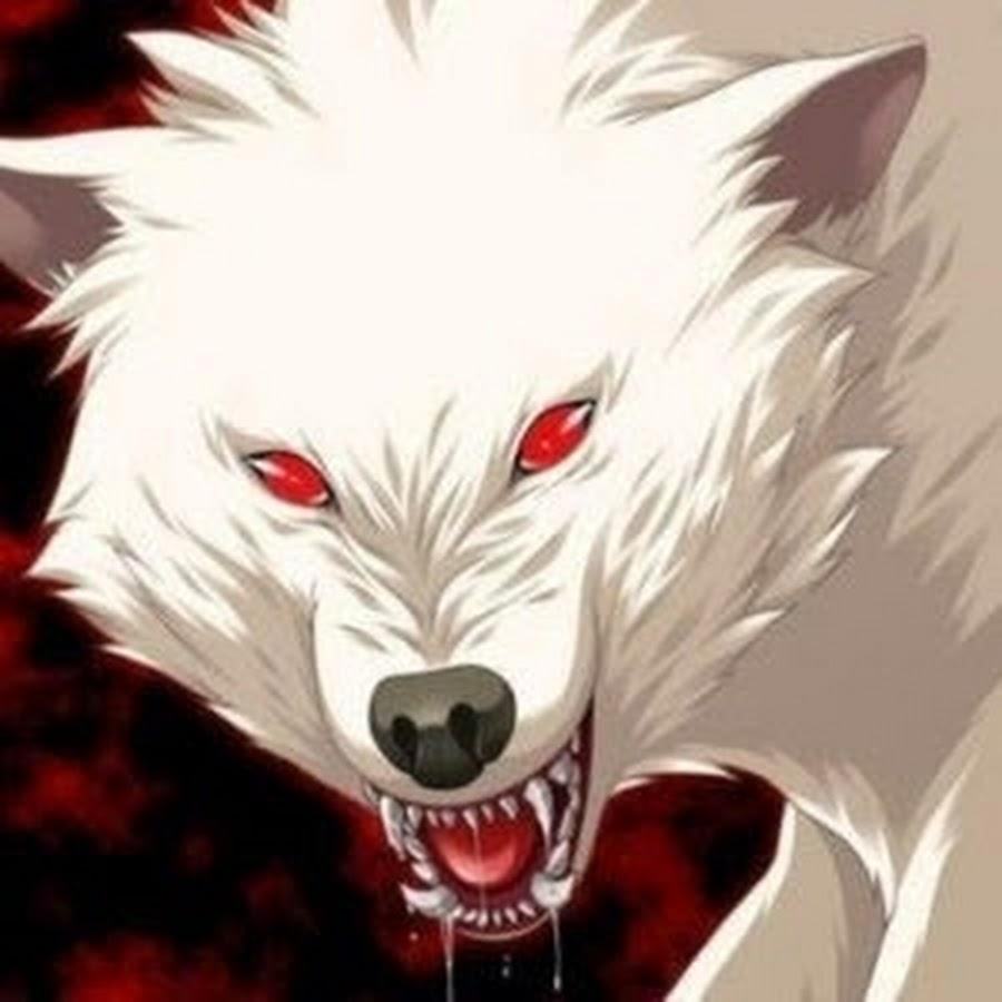 wolfx1120 youtube