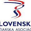 Slovak Ski