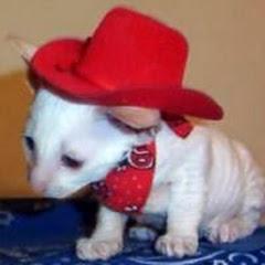 Cowboy Claws