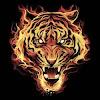 TigrisRex14