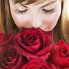 Florería La Orquídea