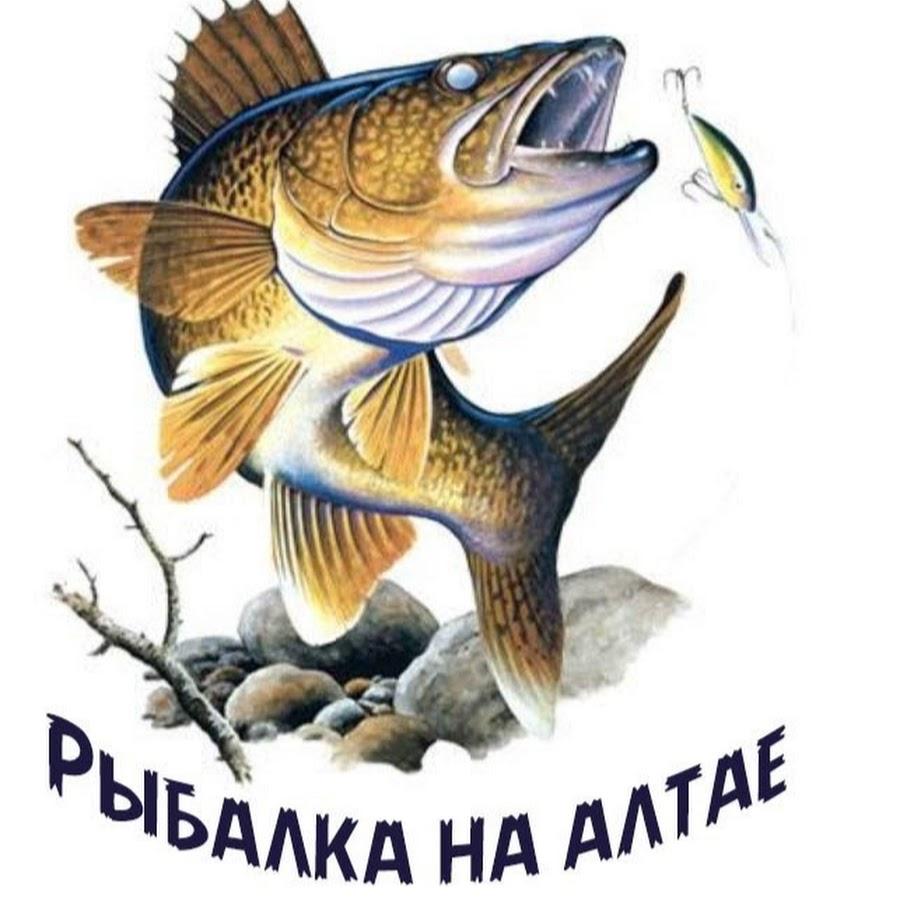 рыболовные темы в группах