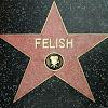 FelishTV