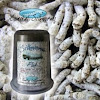Coastalsilkworms