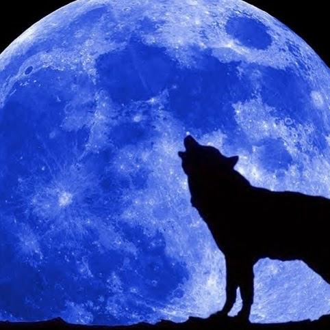 ani moon
