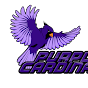 Purple Cardinal