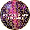 Fedex Frecuencias Del Alma