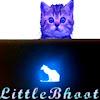 LittleBhoot
