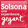 Solsona Turisme