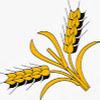 Kmetija.si - Vse kar potrebuje dober gospodar