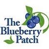BlueberryOhio