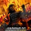 ShadowLogic