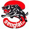 Senglar- Die leichten Pedelecs aus Weinheim