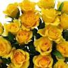 YellowTexasRose90