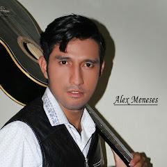 Alex Meneses zambrano
