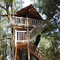 Treehouse Dreamers