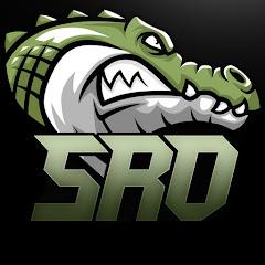SRO Gaming - Overwatch