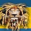Lions-Radio