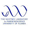 Whitney Laboratory For Marine Bioscience