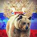 севастопольский медведь