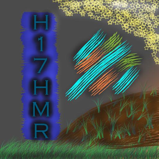 H17HMR