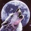 silverwolfc