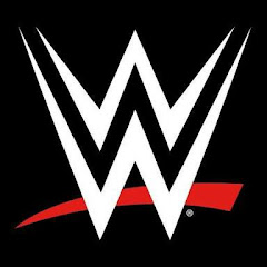 WWE THE WRESTLING WORLDZ