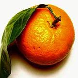 TangerineASMR