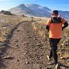 Run All The Trails