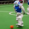 HTWK Robots