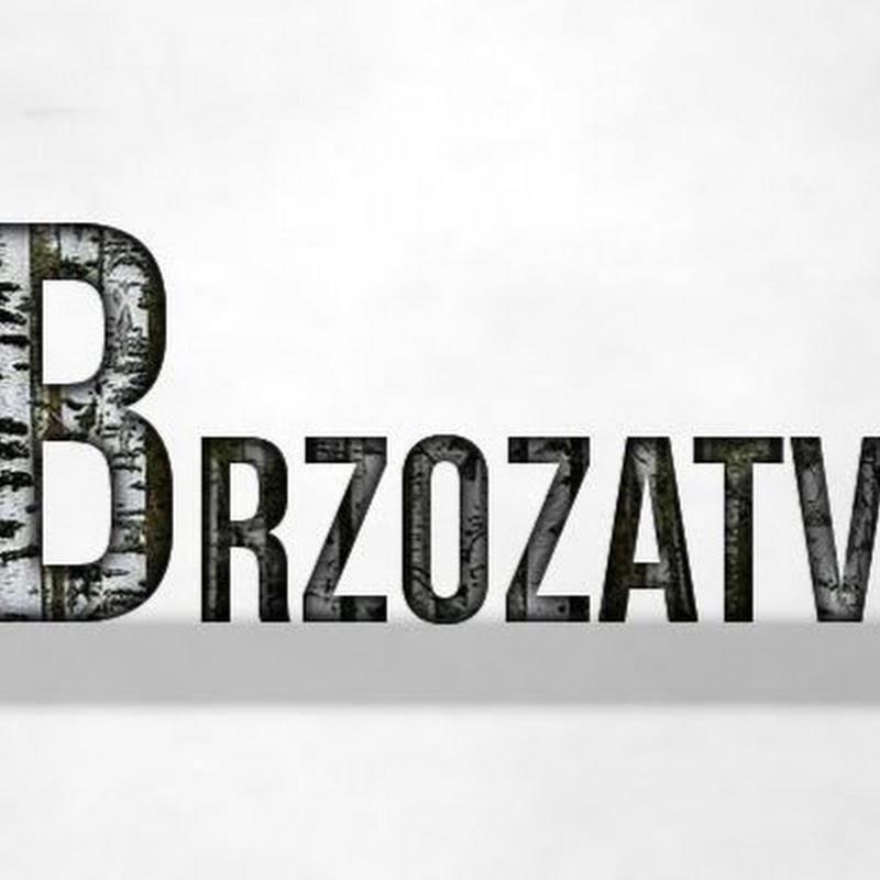 Brzoza TV