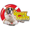 Sunny Saints