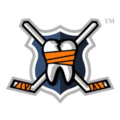 hockeyfightsdotcom profile image