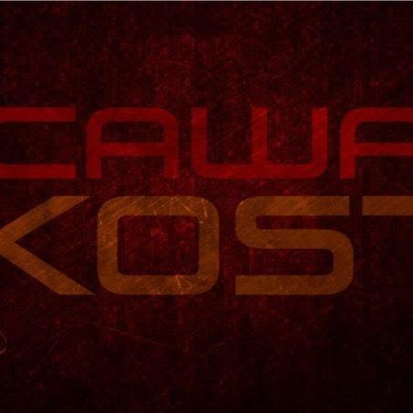 Саша_Kost