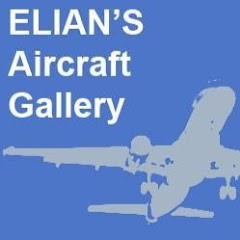 Elian's aviation Video
