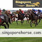 SINGAPORE HORSE RACING RESULTS