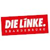 DIE LINKE. Brandenburg
