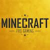 Minecraft Pro Gaming - MCPG FR