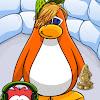 Pinguinord2